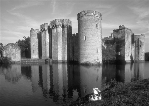 Bodiam Castle with duck