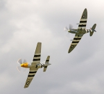 Mustang and Spitfire 2