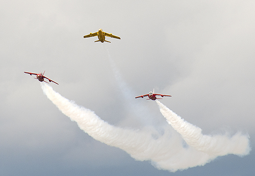 Gnats Display Team 1