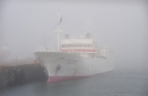 Moored in the Mist